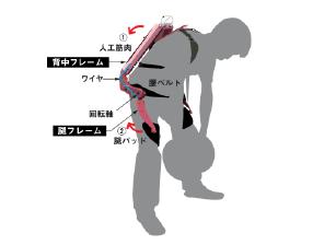 腰補助動作原理